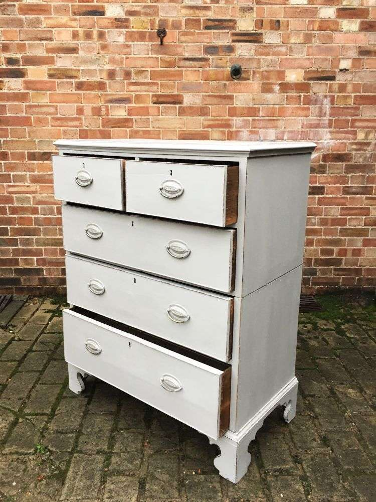Georgian Painted Mahogany Country Chest2